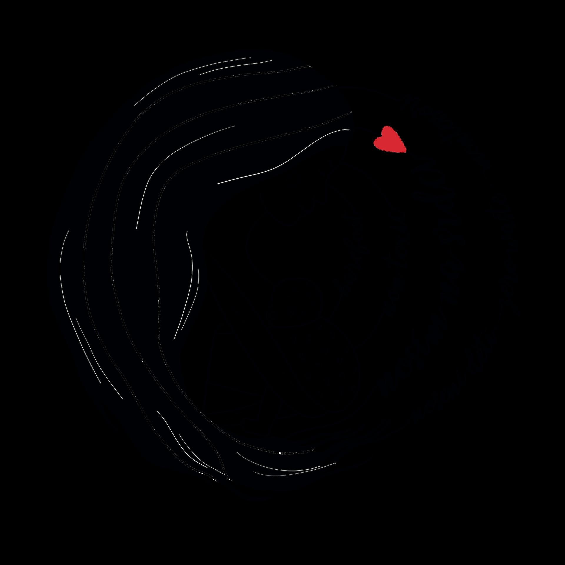 logo_skupinanosimnasrdci_trsansparent